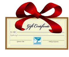 Give the gift or incentive of travel!